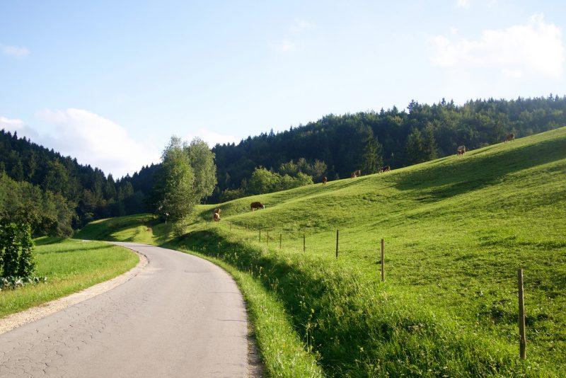 Wiejska droga w Słowenii