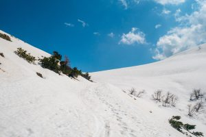 Do góry po śladach nart i z asystą GPS-u