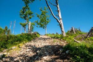 Kilkanaście metrów ostrego wypychu na niebieskim szlaku. Bezpośrednio przed Halą Lipowską